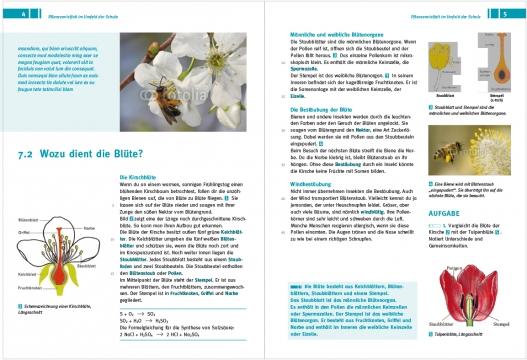 layout_Natur_entdecken-8.jpg