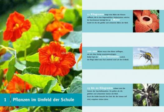 layout_Natur_entdecken-2.jpg