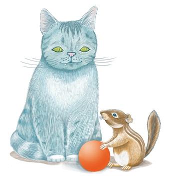 Illustration_Katze_Streifenhoernchen3.jpg